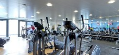 Evolve Pro Fitness